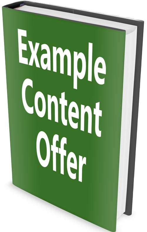 Example content offer cover to help generate leads for business growth